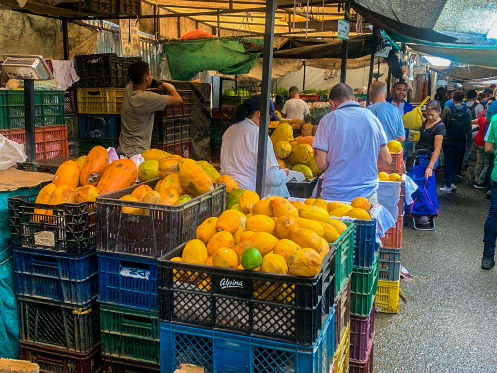 Tour Tour de Fruta Exótica (Desde Medellin más Recojo ...