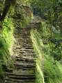 Escalas Hacia Lost city en 5d/4n Ciudad Perdida (Lost City)