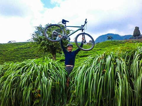 Vive la Vida Al Máximo - Bicicleta de Montaña