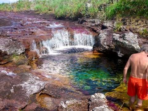From the Macarena 3d / 2n: Meet Caño Cristales Espectacular