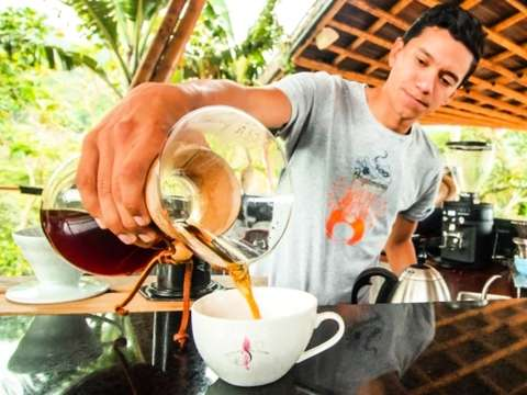 From Bogotá: Coffee Experience on the Palm & the Toucan