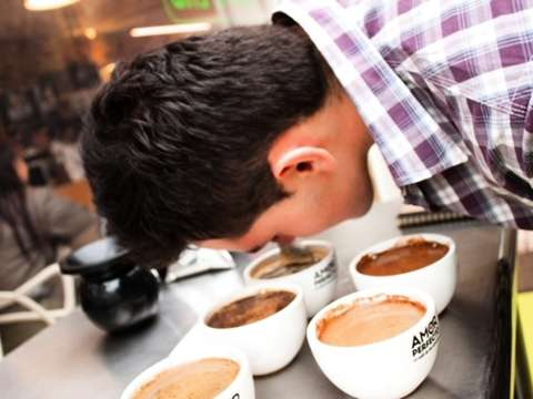 Coffee Class in Bogotá - Learn from the Teachers of ...