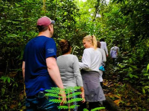 Jungle and Maloca Walk