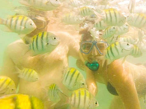 Unique Experience 4 Paradises and Plankton